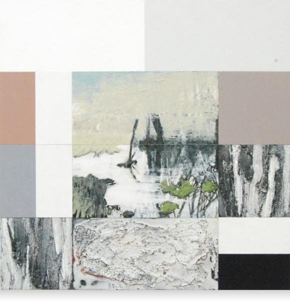 Peel - 60 x 60 cm - 2011