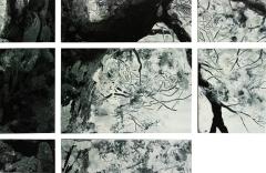 Dancing Tree 1 Detail 1