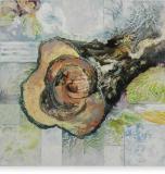 De boom ademt zijn innerlijk zelf - 120 x 120 cm - 2011