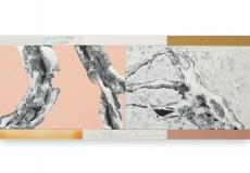 Toenadering no.5 - acryl op paneel - 90x375 cm