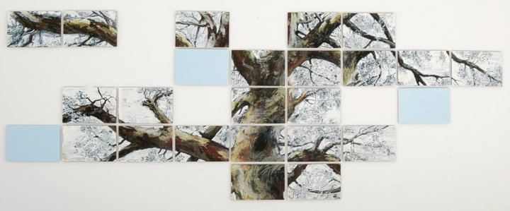 Boom van de Wieger 420 x 158 cm